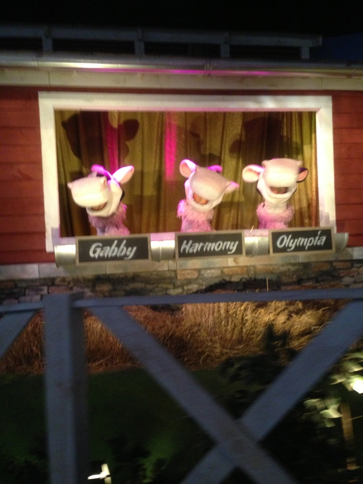 Three cows singing
